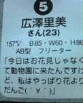 ばか1.JPG