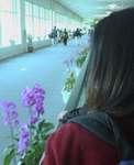沖縄空港4.JPG