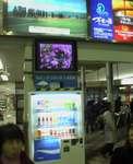 三島19.JPG